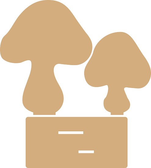 Noor! Design - MDF Mushroom on foot