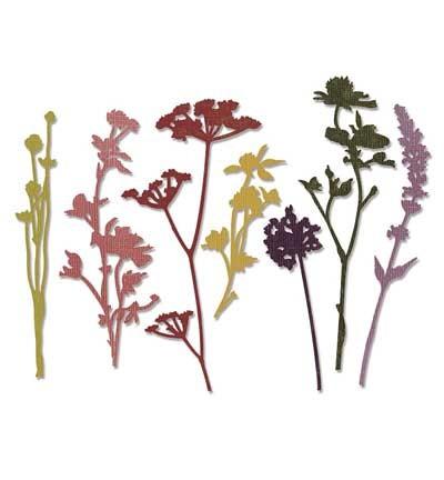 Sizzix - Thinlitz - Tim Holtz Wildflowers