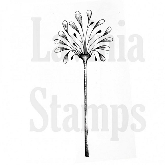 Lavinia Stamps - Floral Spray