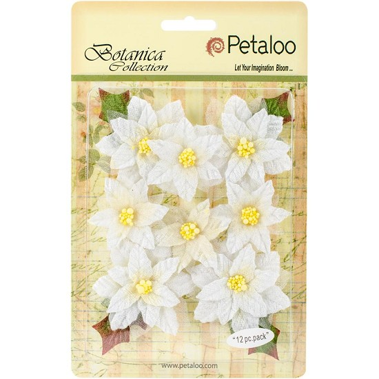 Petaloo - Botanical Collection - Regal Velvet Poinsettia White