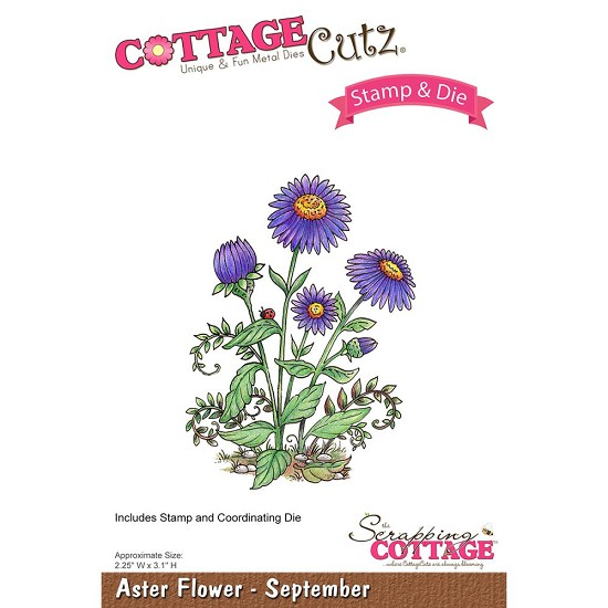 CottageCutz Stamp & Die Set - Aster Flower