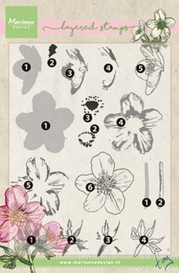 Marianne Design - Layering Stamps - Tiny`s Helleborus