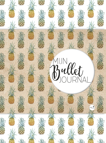 BBNC - Mijn Bullet Journal - Ananas