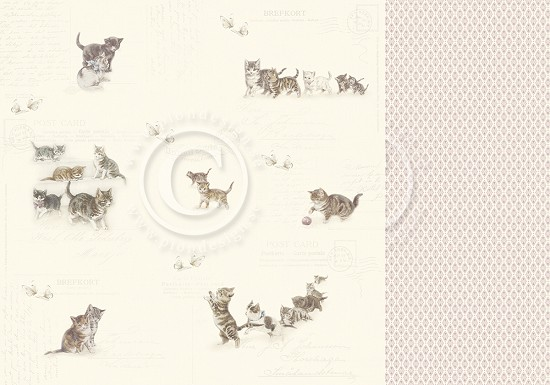 Scrappapier PION Design - Our Flurry Friends - Leaving Pawprints