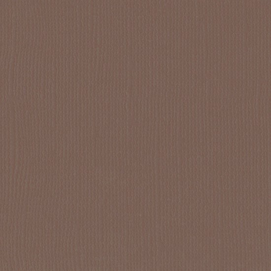"""Florence Cardstock - Texture 12x12"""" - Bear"""