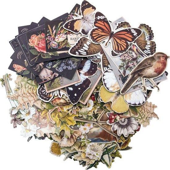 Tim Holtz - Idea-Ology Die Cuts - Botanical