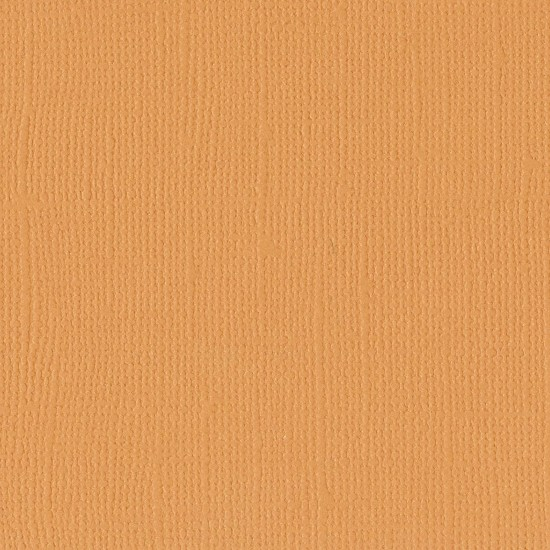 "Florence Cardstock - Texture 12x12"" - Apricot"