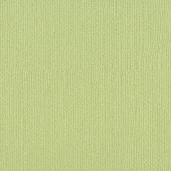 "Florence Cardstock - Texture 12x12"" - Anise"