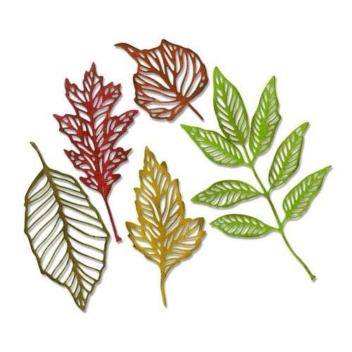 Sizzix - Thinlits Die Set - Skeleton Leaves