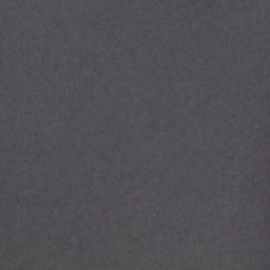 Florence Cardstock - Smooth (glad) 216 gr) - Graphite