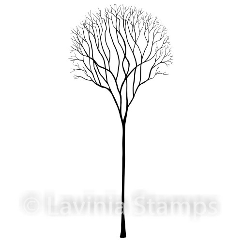 Lavinia Stamps - Skeleton Tree