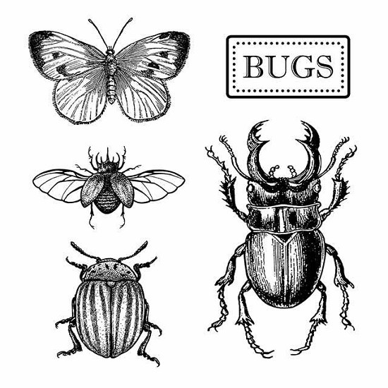 Rubber Stamp - Stamperia - Bugs