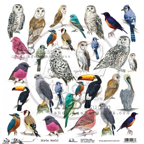 "AB Studio - Scrappapier ""Birds Worlds"""