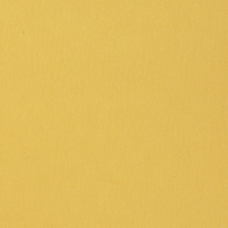 Florence Cardstock - Smooth (glad) 216 gr) - Asparagus