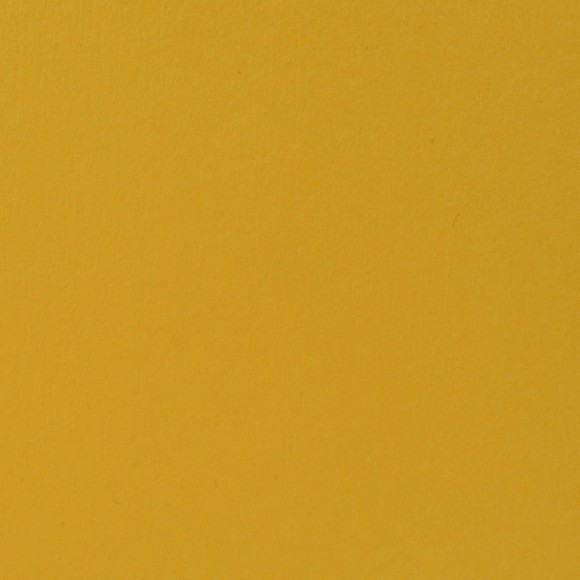 Florence Cardstock - Smooth (glad) 216 gr) - Honey