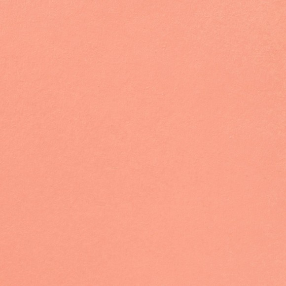 Florence Cardstock - Smooth (glad) 216 gr) - Rose
