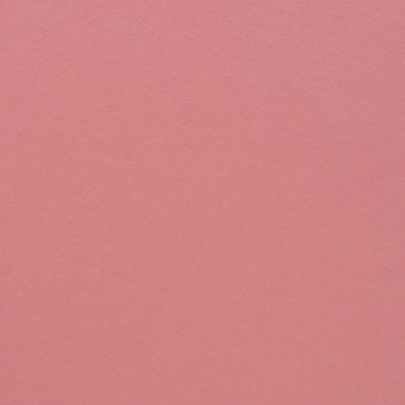 Florence Cardstock - Smooth (glad) 216 gr) - Pink