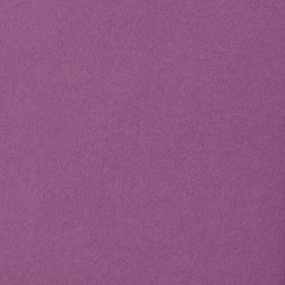 Florence Cardstock - Smooth (glad) 216 gr) - Plum