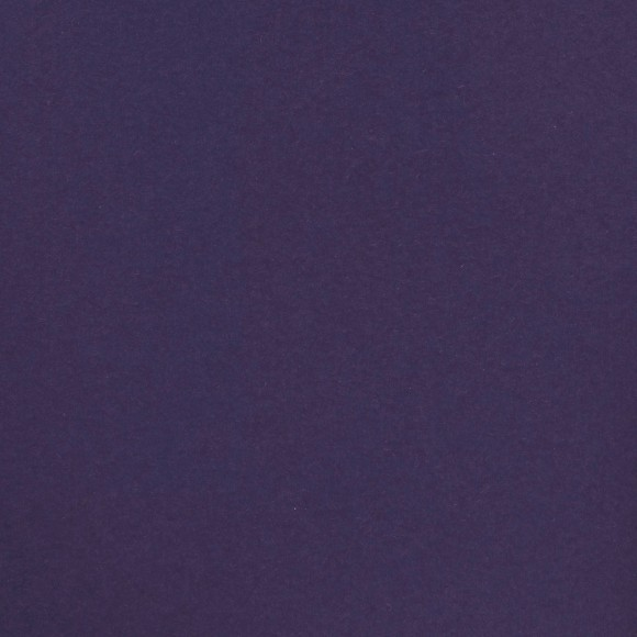 Florence Cardstock - Smooth (glad) 216 gr) - Ink