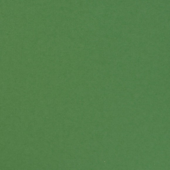 Florence Cardstock - Smooth (glad) 216 gr) - Emerald