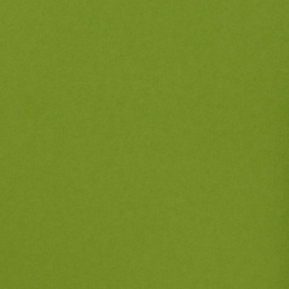 Florence Cardstock - Smooth (glad) 216 gr) - Lime