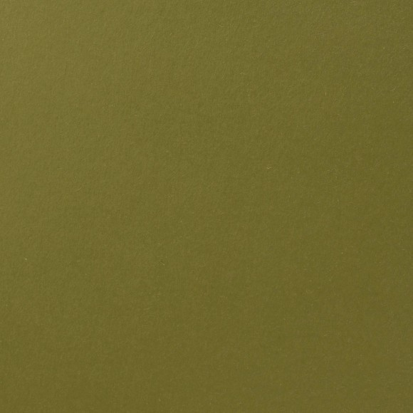 Florence Cardstock - Smooth (glad) 216 gr) - Fern