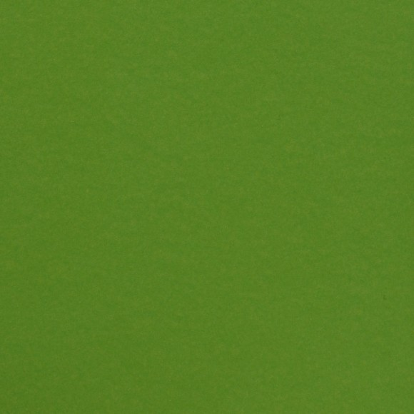 Florence Cardstock - Smooth (glad) 216 gr) - Frog