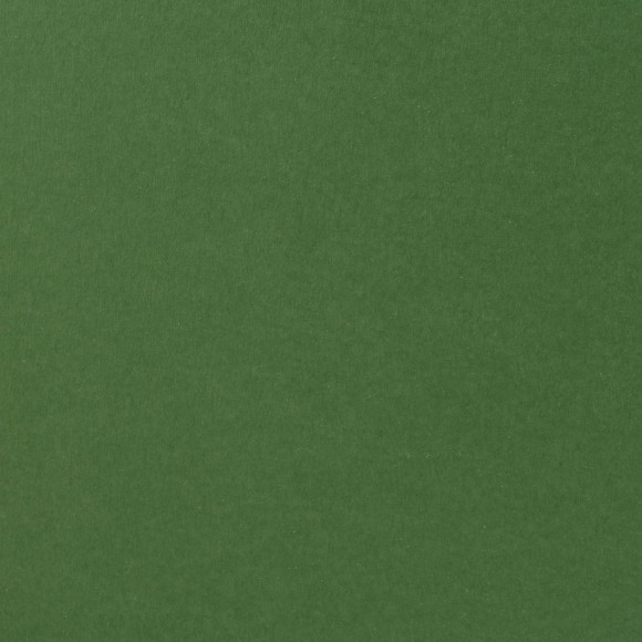 Florence Cardstock - Smooth (glad) 216 gr) - Broccoli