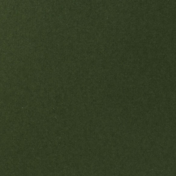 Florence Cardstock - Smooth (glad) 216 gr) - Pine