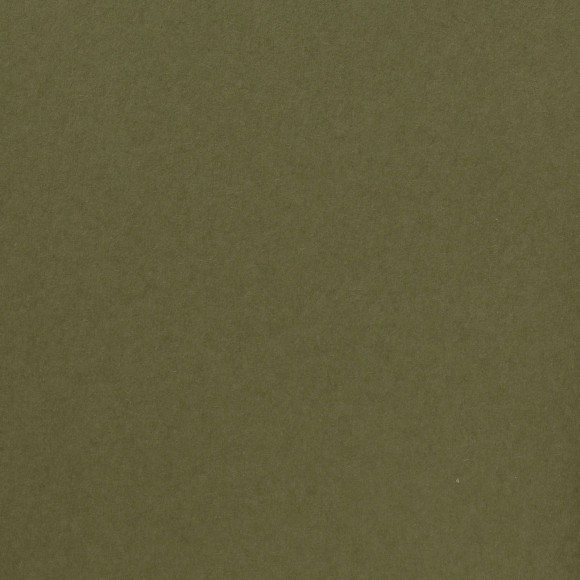 Florence Cardstock - Smooth (glad) 216 gr) - Acacia