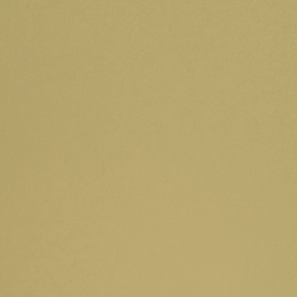 Florence Cardstock - Smooth (glad) 216 gr) - Pudding