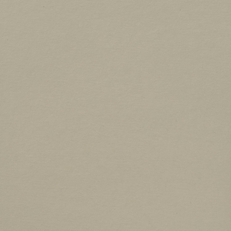Florence Cardstock - Smooth (glad) 216 gr) - Cool Grey