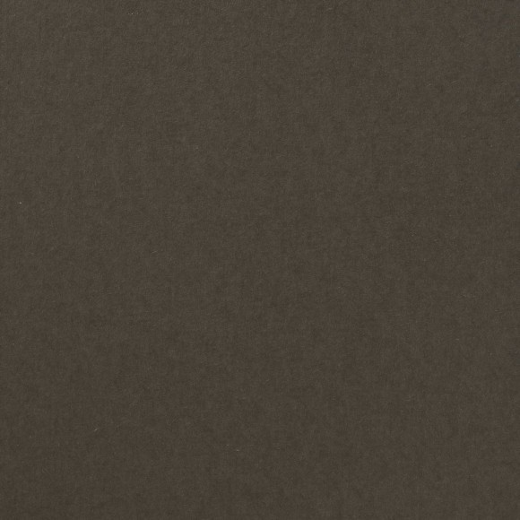 Florence Cardstock - Smooth (glad) 216 gr) - Concrete