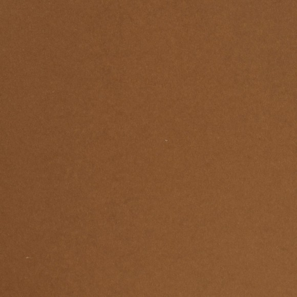 Florence Cardstock - Smooth (glad) 216 gr) - Brick