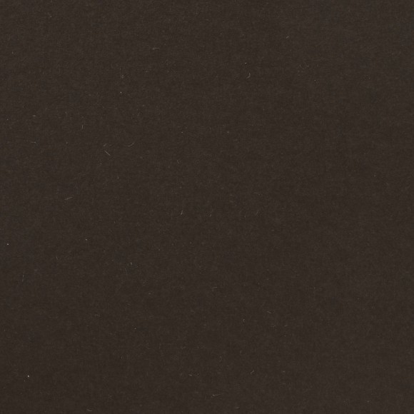 Florence Cardstock - Smooth (glad) 216 gr) - Bear