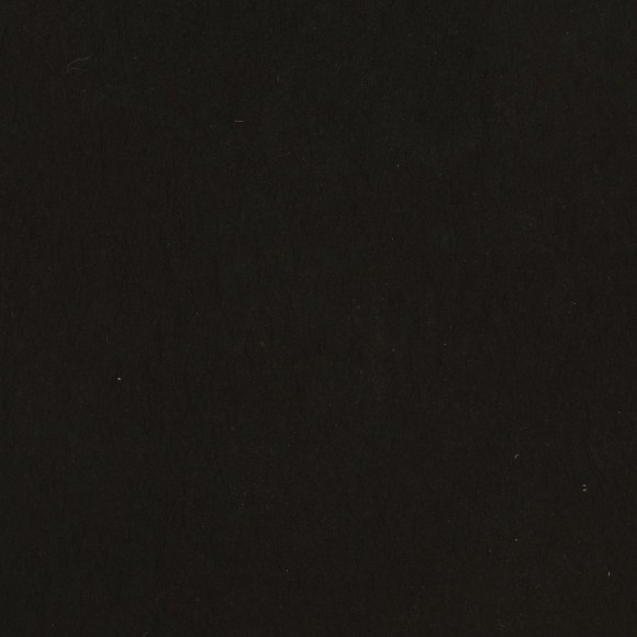 Florence Cardstock - Smooth (glad) 216 gr) - Black