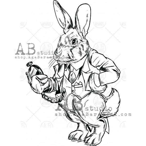 AB Studio - Rubber Stamp - Rabbit In Wonderland - ID-81