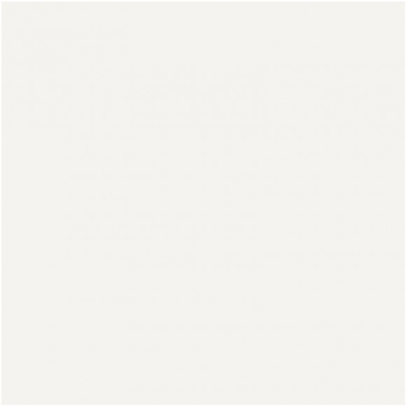 Florence Cardstock - Smooth (glad) 216 gr) - Off White