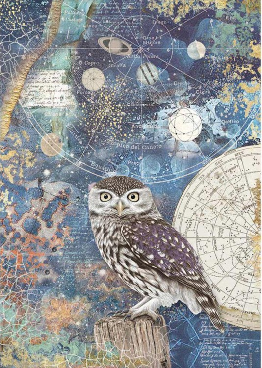Stamperia - Rice Paper A4 - Cosmos Owl