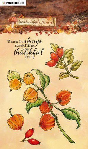 Studio Light - Wonderful Autumn - Stempel A6 - STAMPWA481