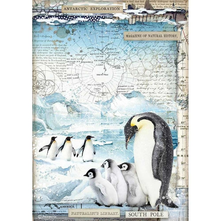 Stamperia - Rice Paper A4 - Penguins