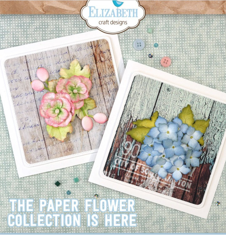 Elizabeth Craft Design - The Paper Flower Collection - ACTIESET