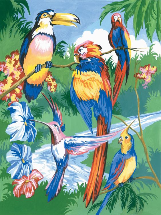 Royal & Langnickel - Painting by numbers - Tropical Birds