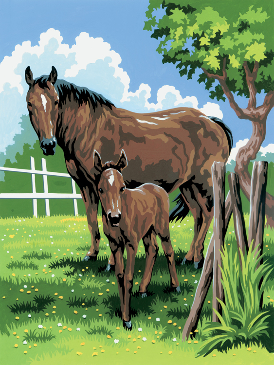 Royal & Langnickel - Painting by numbers - Mare and Foal
