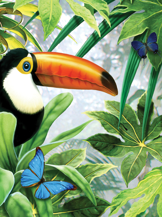 Royal & Langnickel - Painting by numbers - Jungle Toucan