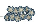 ScrapBerry`s flowers - Cherry Blossom - White with Blue