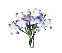 ScrapBerry`s flowers - Stemmed Lily 10 pcs in a pack - White & Blue