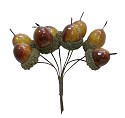 ScrapBerry`s - Acorns/bundle - 8pcs