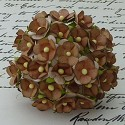 WOC Flowers - Sweetheart Blossom - 2Tone Brown