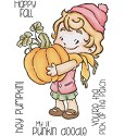 Stempel C.C. Designs - Rustic Sugar - Cinnamon with Pumpkin
